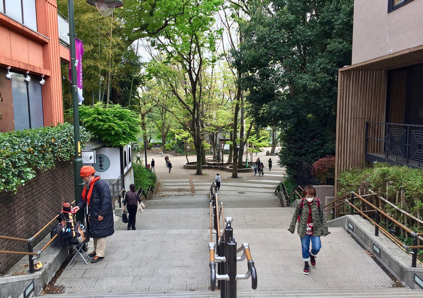 吉祥寺の緑のオアシス「井の頭恩賜公園」