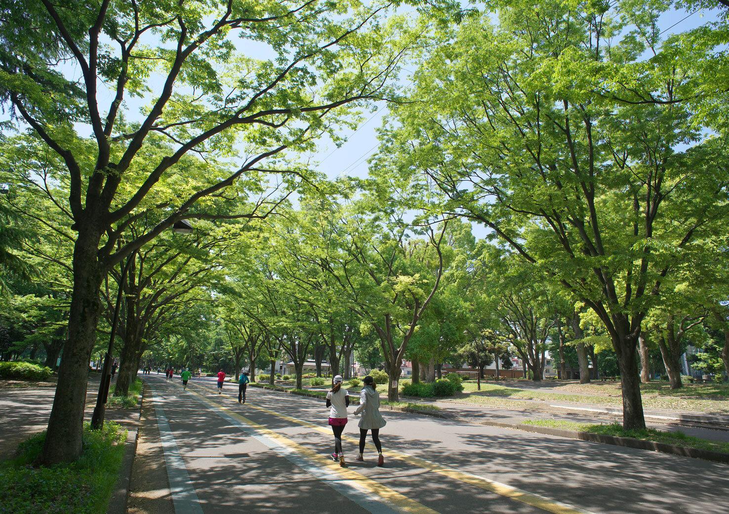 「駒沢オリンピック公園」で前回の東京オリンピックを振り返り、来年の東京2020大会のカウントダウンをしよう